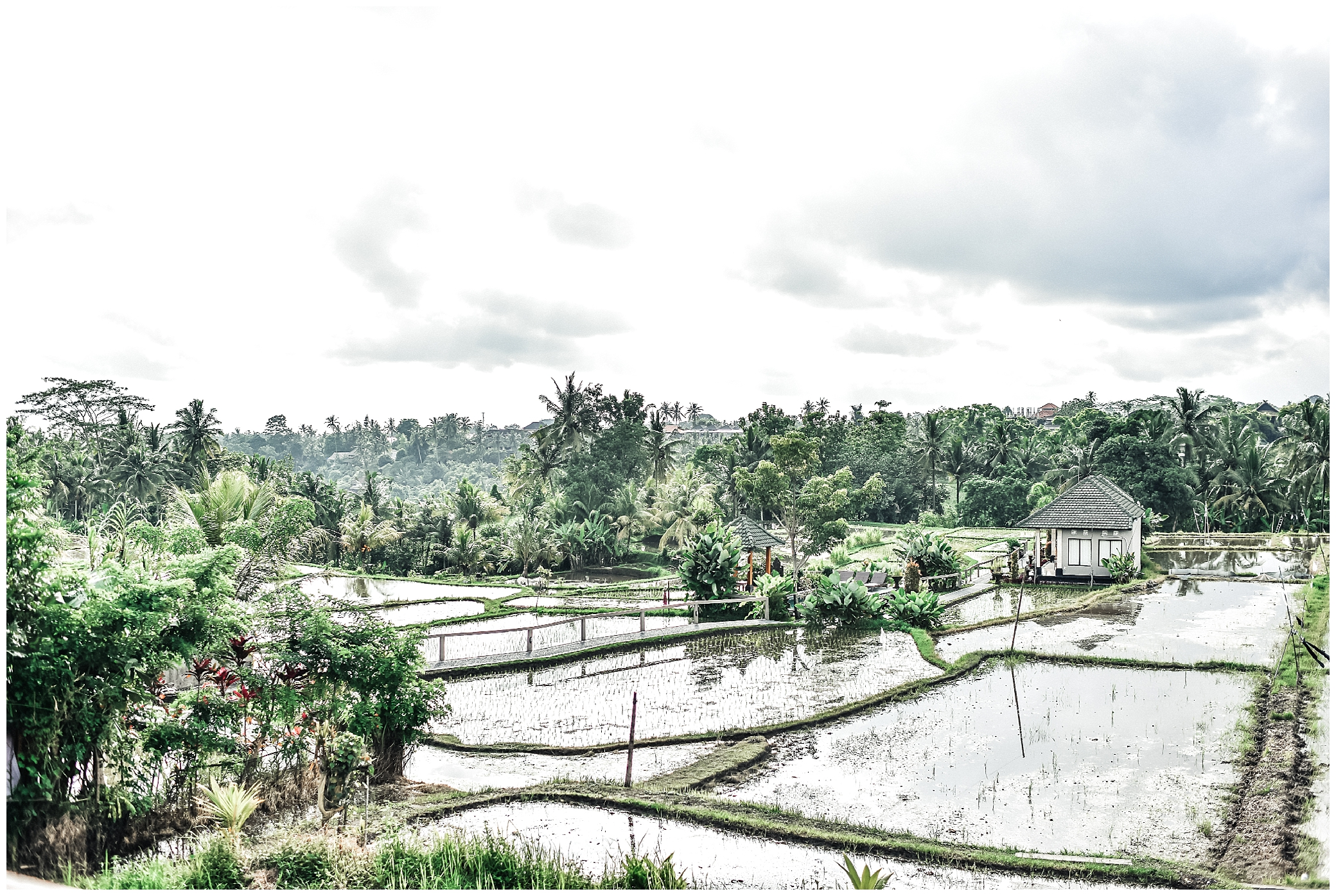 Top 10 Awesome Things To Do In Ubud_0026.jpg