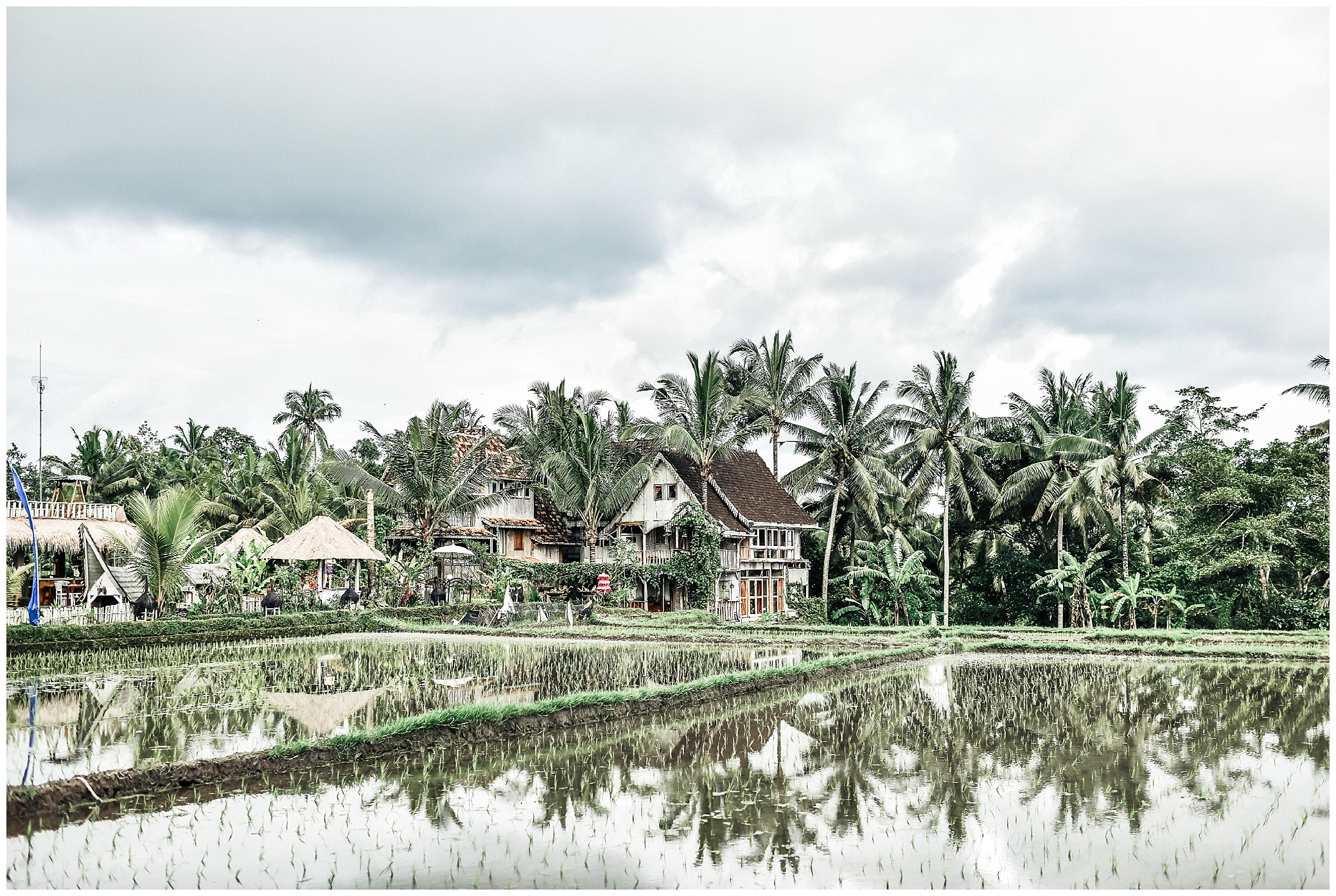 Top 10 Awesome Things To Do In Ubud_0030.jpg